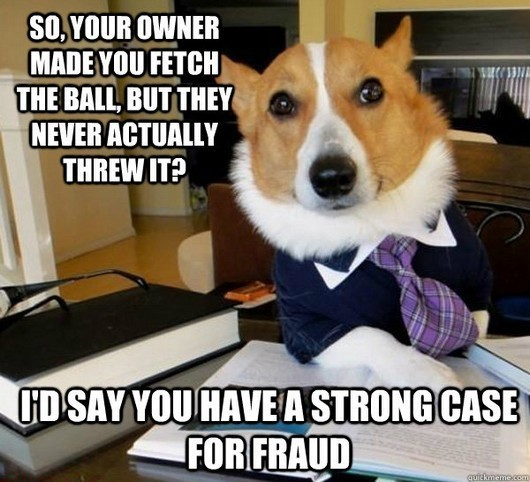 lawyer dog meme
