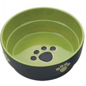 Ethical Fresco Dog Dish Green 7